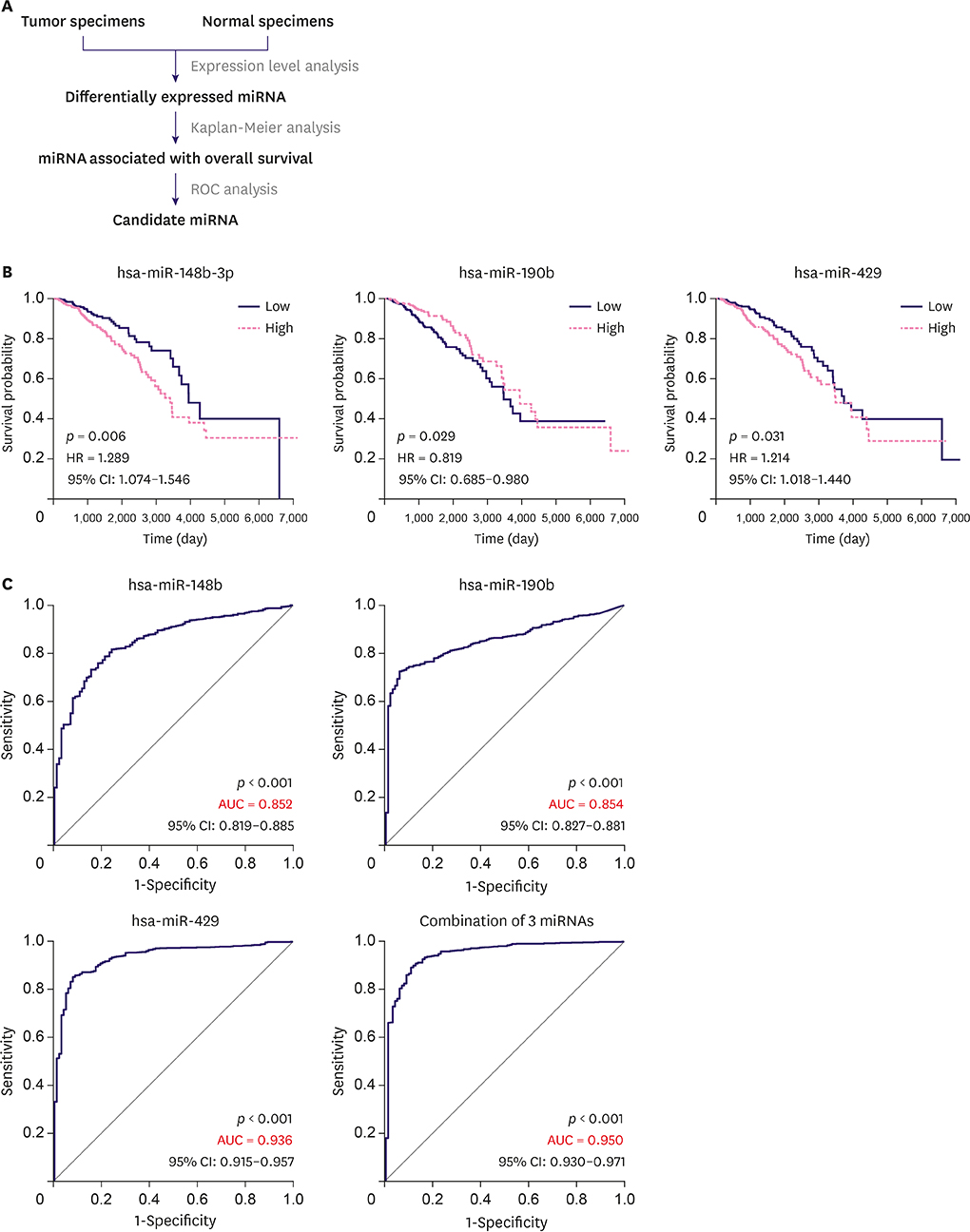 miR-148b-3p, miR-190b, and miR-429 Regulate Cell Progression